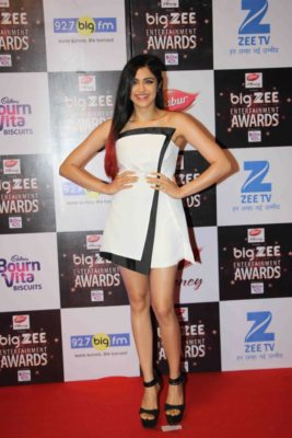 BIG ZEE Entertainment Awards 2017_Bollyworm (10)
