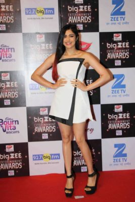 BIG ZEE Entertainment Awards 2017_Bollyworm (11)