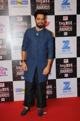 BIG ZEE Entertainment Awards 2017_Bollyworm (13)