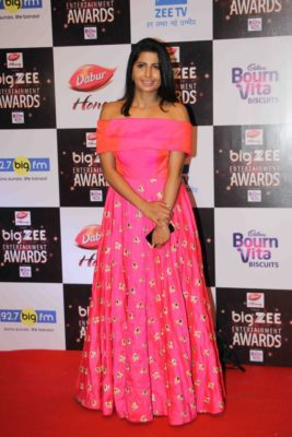 BIG ZEE Entertainment Awards 2017_Bollyworm (2)