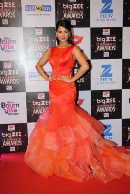 BIG ZEE Entertainment Awards 2017_Bollyworm (21)