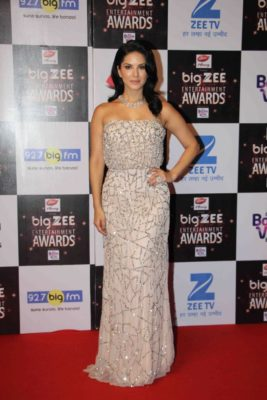 BIG ZEE Entertainment Awards 2017_Bollyworm (27)