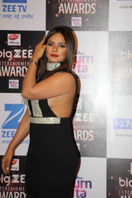 BIG ZEE Entertainment Awards 2017_Bollyworm (36)