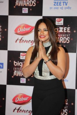 BIG ZEE Entertainment Awards 2017_Bollyworm (39)