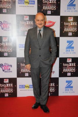 BIG ZEE Entertainment Awards 2017_Bollyworm (40)