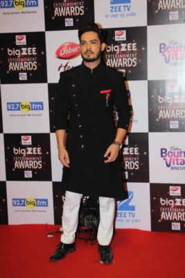 BIG ZEE Entertainment Awards 2017_Bollyworm (41)