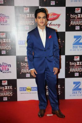 BIG ZEE Entertainment Awards 2017_Bollyworm (46)