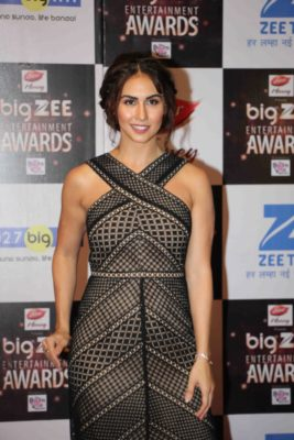 BIG ZEE Entertainment Awards 2017_Bollyworm (51)