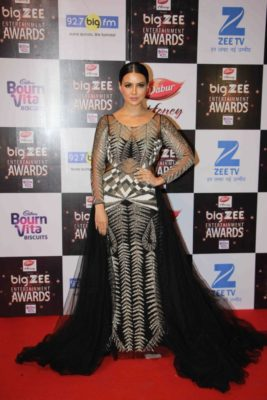 BIG ZEE Entertainment Awards 2017_Bollyworm (55)