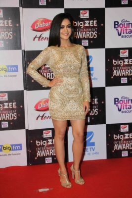 BIG ZEE Entertainment Awards 2017_Bollyworm (6)