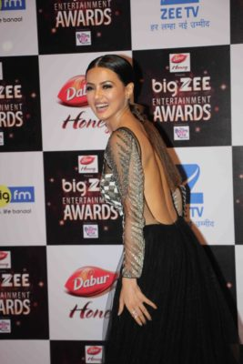 BIG ZEE Entertainment Awards 2017_Bollyworm (61)