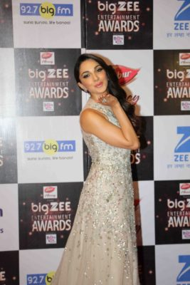 BIG ZEE Entertainment Awards 2017_Bollyworm (68)
