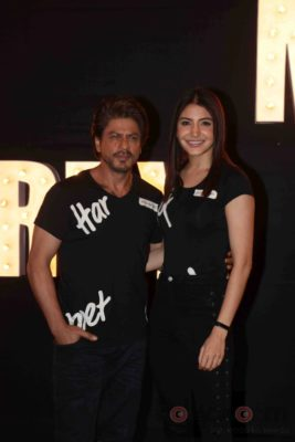 Jab Harry Met Sejal_bollyworm (31)