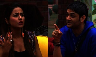 Bigg Boss 11 Vikas and Hina